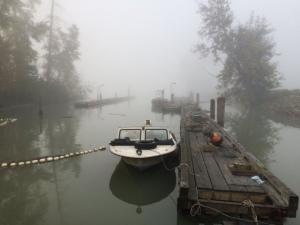 foggy days waiting for the fishing season